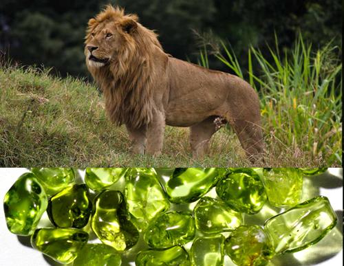 Фото Камни для Льва мужчины