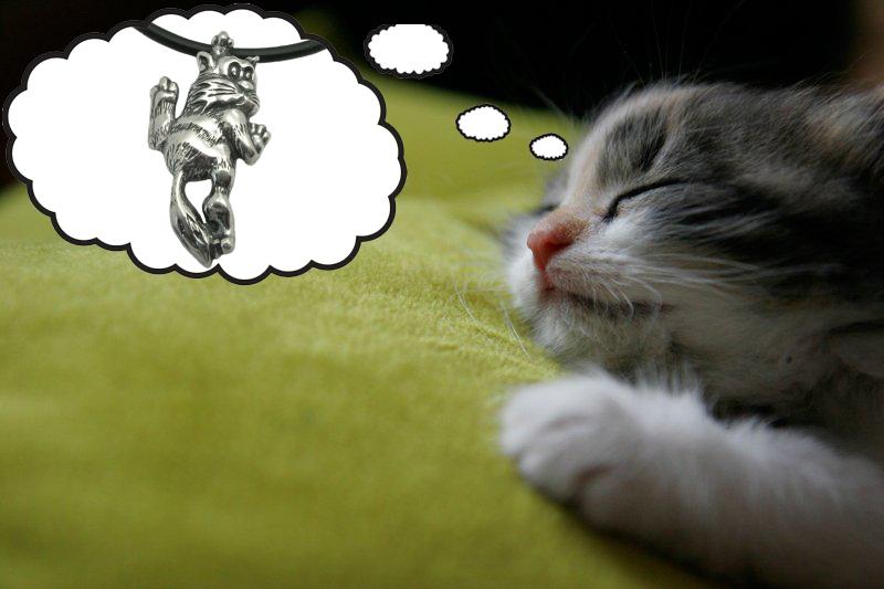 Фото Сон котика о подвесе Котик